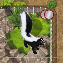 Zooloretto: Skunk